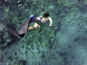 Kuba Reisetipps Schnorcheln