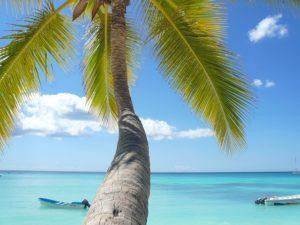 Karibik im Juni